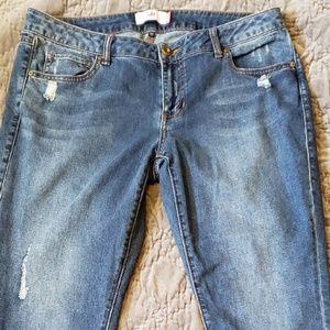 Cabi Denim Skinny Jean's sz 14